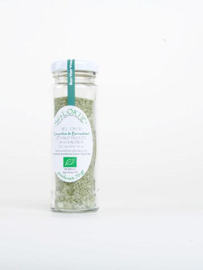 Les Jardins de Bernadette Condiments sel ortie 03
