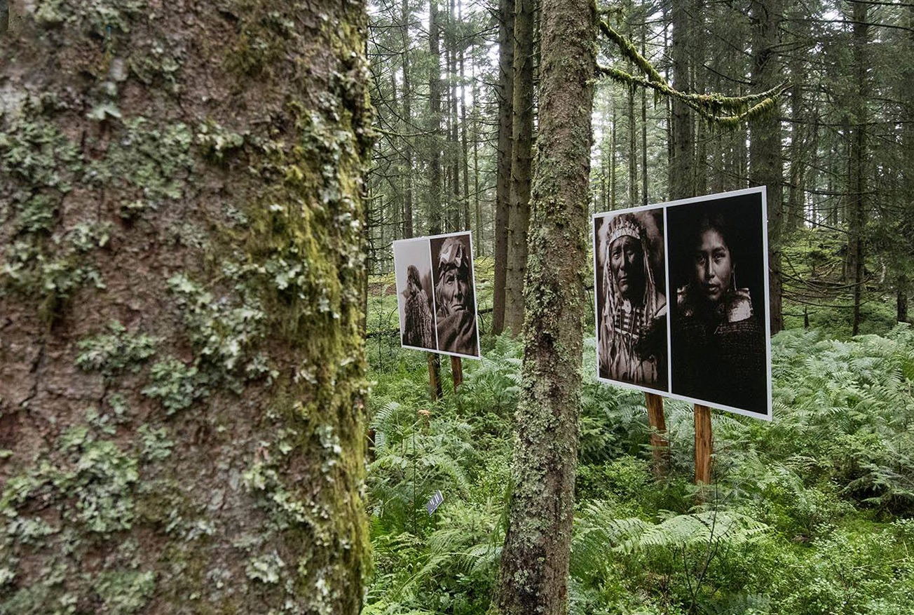 Les Jardins de Bernadette photos sentiers de la photos 13